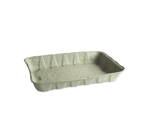Kartonski pladenj 240x160x37 mm zelen
